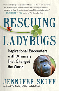 RESCUING LADYBUGS by Jennifer Skiff: An excerpt > New World